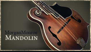 Morgan Monroe Mandolin